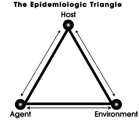 Pengertian Epidemiologi